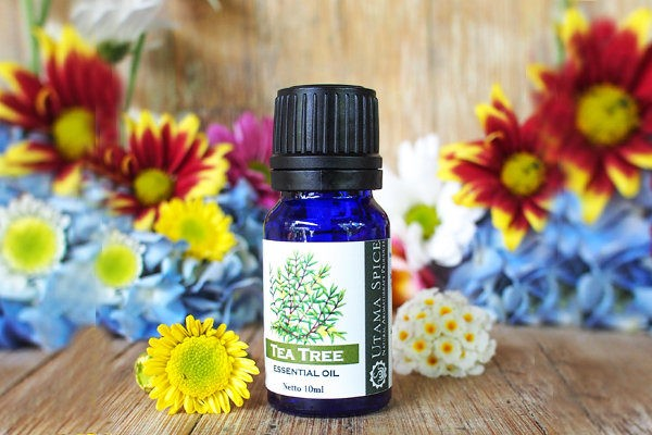 Tea_Tree_Essential_Oil_10ml