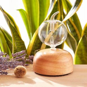 Quality nebulizing diffusers and essential oils