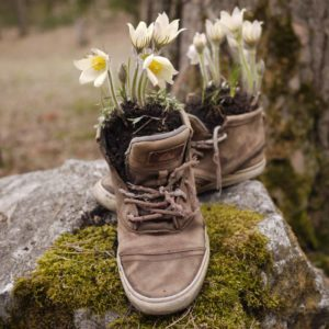 unusual essential oil uses deodorize shoes