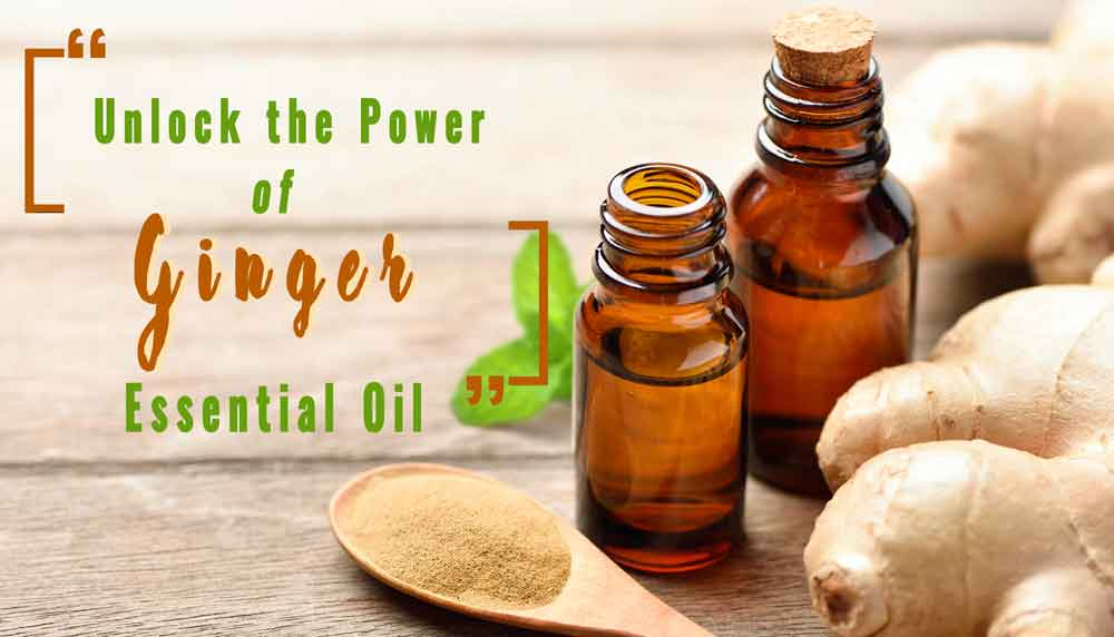 unlock the power of ginger essential oil